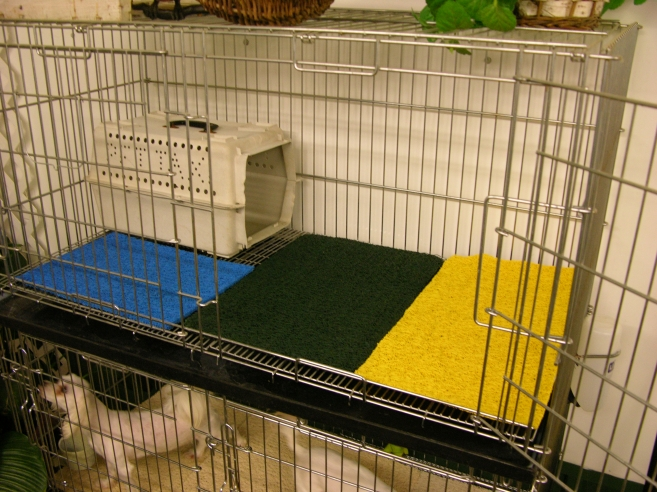 dog kennel matting